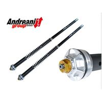 Andreani Adjustable Fork Cartridge Kit for Yamaha XTZ660 image